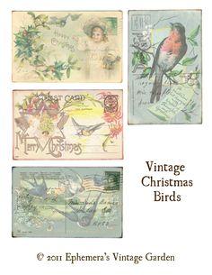 Ephemera's Vintage Garden: Free Printable: Vintage Christmas Birds