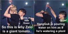 Bap funny Kpop zelo Yongguk