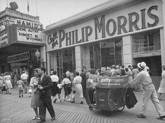 Znalezione obrazy dla zapytania philip morris store
