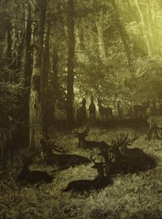 Deer at rest - Gustave Dore Gustave Dore, Art And Illustration, Illustrations, Norman Rockwell, Solas Dragon Age, Charles Perrault, Dark Forest, Art Graphique, Faeries