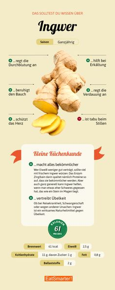 - Alles, was du über Ingwer wissen solltest Diet And Nutrition, Ginger Nutrition, Healthy Life, Healthy Eating, Fat Burning Drinks, Food Facts, Superfood, Clean Eating, Food And Drink