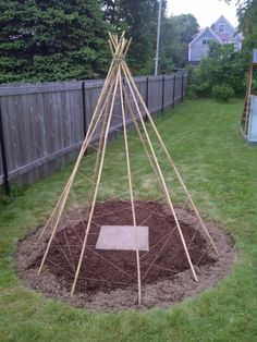 How to make a bean tipi