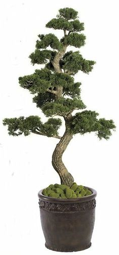 Artificial CHRISTMAS Trees, Artificial Palm Trees, Artificial Plants and Trees - Celebrate The Season in Style, Faux Bonsai Trees Beautify y...