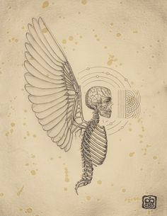 Drawings from Soul of Science, a book on the mysteries of scientific diagrams, secrets of symbols and their everlasting effect, by Mexican artist Daniel Martin Diaz. via thinx