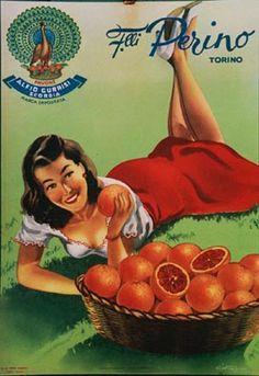 Gian Rosa, Perino Torino Oranges