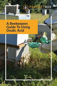 Do you have a problem with Varroa? Or want to stop one before it starts? Learn how and when to treat using oxalic acid! PerfectBee is the best resource for beginner beekeepers as they start their hives. Join our colony today!