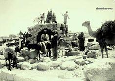 قرية القسطل المهجرة قضاء مدينة القدس - فلسطين 1932م  The Village of displaced, elimination of a city of in Jerusalem, chestnut collection  - Palestine 1932