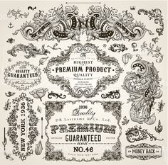 Vintage Frames, Scroll Elements and Floral Ornaments royalty-free stock vector art