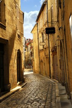 . I so want to walk on a cobblestone street before I die this one isin Perigeux, France