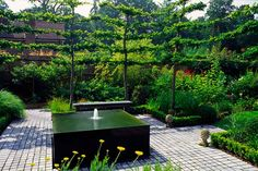 Espalier trees provide privacy in this small suburban yard. Andy Sturgeon, designer
