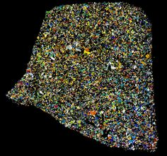 MPOD 170304 from Tucson Meteorites