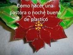 FLORES DE NOCHEBUENA HECHAS CON BOTELLAS PET .- POINSETTIAS MADE FROM PET BOTTLES . - YouTube