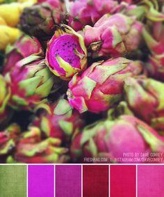 Brandi: dragonfruit palette