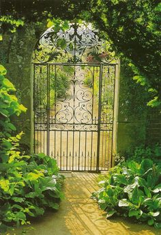 Porte d 39 entr e exterieur en fer forg porte pinterest entr es - Fer forge en anglais ...