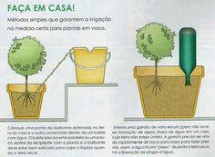 Irrigação de vasos