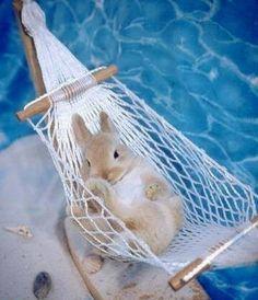 Endlich Urlaub, relaxen erholen entspannen!