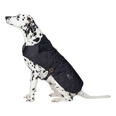 BuyBarbour Quilted Dog Coat, Black, XS Online at johnlewis.com