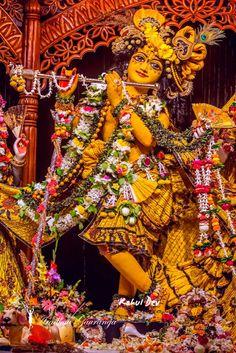 Radha Krishna Holi, Krishna Leela, Radha Krishna Images, Shree Krishna, Lord Krishna, Iskcon Krishna, Krishna Janmashtami, Krishna Wallpaper, Indian Gods