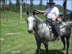 Horse Leasing