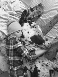 #Great #Dane sleeping with #girl