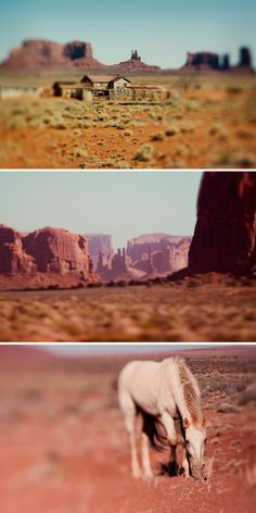 We love the culture in Monument Valley