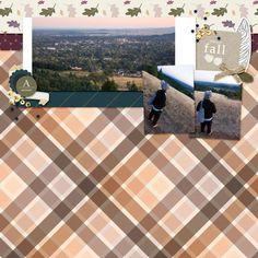 3 photos + fall