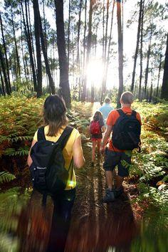 Balade en forêt en famille