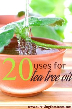 20 Different Ways To Use Tea Tree Oil - lots of great options | www.survivingthestores.com