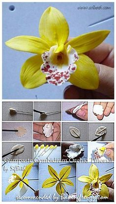 Wonderful Images Orchid Flower fondant Suggestions Do you possess a gorgeous orchid in your house that you're not pretty guaranteed precisely how to tend to? Polymer Clay Flowers, Ceramic Flowers, Polymer Clay Crafts, Handmade Flowers, Diy Flowers, Fabric Flowers, Fondant Flower Tutorial, Fondant Flowers, Diy Tutorial