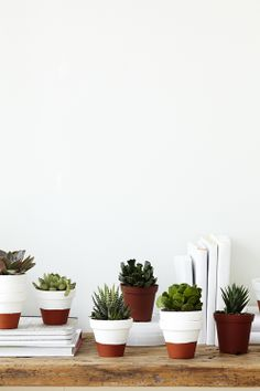 paint-dipped flower pots featuring succulents