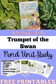 Prepare some fun outdoor learning activities with a Trumpet of the Swan Pond study filled with activities to get your kids outside Learning Activities, Kids Learning, Activities For Kids, Preschool Games, Outdoor Learning, Nature Study, Project Based Learning, Children's Literature, Learn To Read