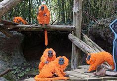 Google Image Result for http://assets.inhabitots.com/wp-content/uploads/2010/04/zoo-lego-sculptures.jpg
