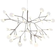 Heracleum II Small LED Chandelier by Moooi - Modern - Chandeliers - by Lumens