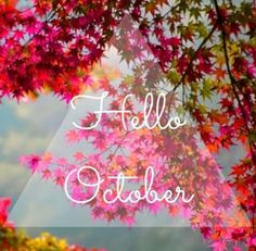 I love October its getting cold!