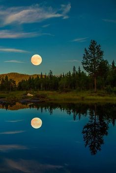 The photograph is an example of balance in nature. The reflection of the trees and moon on the lake make it seem like land and then the upside down. If folded and put together they would make up one exact forest and moon. Beautiful Moon, Beautiful World, Shoot The Moon, Moon Pictures, Night Pictures, Summer Nights, Summer Evening, Belle Photo, Amazing Nature