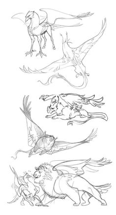 Gryphons by Drkav on Animal Sketches, Animal Drawings, Cool Drawings, Art Sketches, Mythical Creatures Art, Creature Drawings, Poses References, Illustration Art, Illustrations