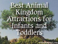 Disney Under 3 - Best Attractions at Disney's Animal Kingdom for Infants and Toddlers disney animal kingdom #disney