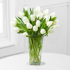 20 White Tulips in a Vase – Shaheena Flowers White Tulips, Tulips Flowers, Shed Storage, Drawer Storage, Large Glass Vase, Yard Sheds, Ocean House, Decorating Coffee Tables, Back Gardens