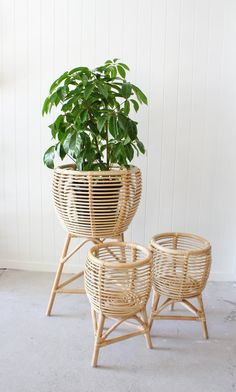 Our stylish rattan beach chairs are light and easy to take to the beach, pool or park. House Plants Decor, Plant Decor, Bamboo Furniture, Home Furniture, Rattan Planters, Diy Plant Stand, Plant Stands, Small Plant Stand, Beach Chairs