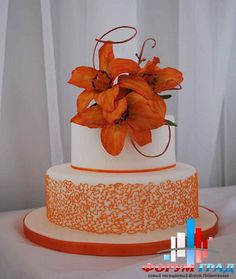 Food Glorious Food White Lily Cake