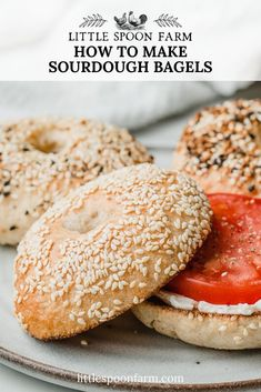 Sourdough bagels are easy to make with this overnight recipe! Only a few steps are needed to have the most deliciously chewy bagel you've ever had! Sourdough Bagels, Sourdough Recipes, Bread Recipes, Baking Recipes, Homemade Sandwich, Homemade Bagels, Bagel Toppings, Cheese Bagels, Breakfast Bagel