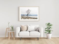 Wanaka New Zealand, Photo Wall Hanging, Pallet Tv Stands, Travel Wall Art, Tv Storage, Record Storage, Photo Tree, Hanging Pictures, Cool Rooms