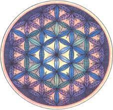 Resultado de imagen para pictograma flor vida