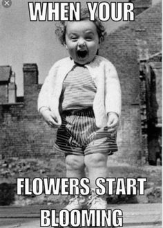 This was so me when I finally got my orchid to bloom!!!!