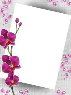 Bg Design, Collage Design, Wedding Invitation Background, Boarders And Frames, Doodle Frames, Text Frame, Flower Phone Wallpaper, Framed Wallpaper, Instagram Frame