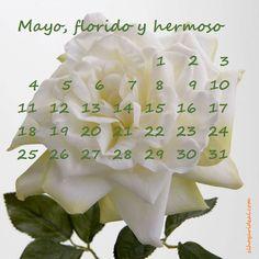 Los meses de El Hogar Ideal. Mayo es Ideal. http://elhogarideal.com/es/