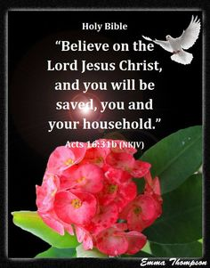 """ACTS 16:31  31. They said to him, """"Believe in the Lord Jesus and  you will be saved—you and all who live in your house."""""""