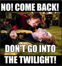 Cedric Diggory : Edward Cullen