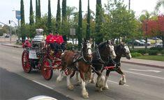 CSFA Steamer Team closes out the year with Escondido parade
