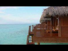 ▶ Chris Rea - Thinking Of You - YouTube
